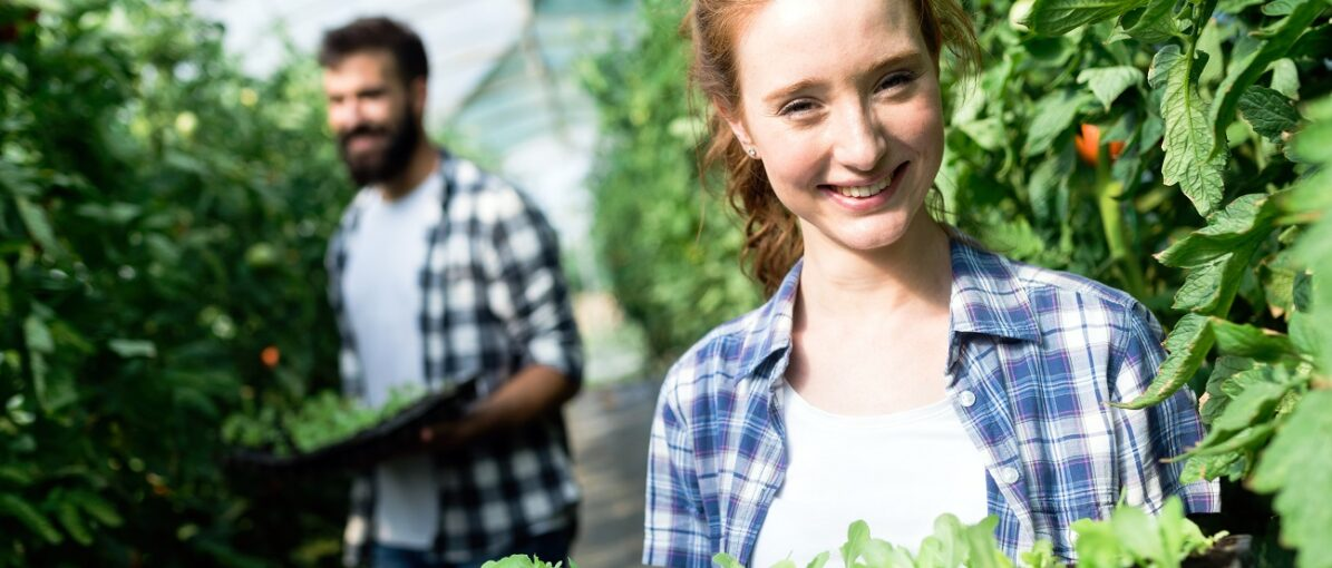 Canada's organic sector just keeps growing