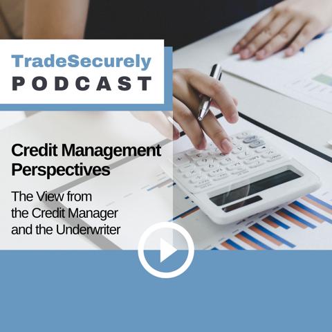 Episode 23: Credit Management Perspectives